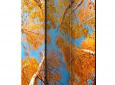 Paraván - Autumnal treetops [Room Dividers]